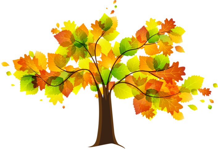 Leaves in a tree change color from green to oranges and browns, and blow away in an autumn wind.